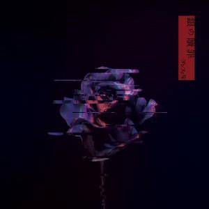 DSI-014